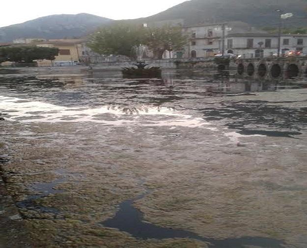 Futuromolise indecente lo stato del laghetto di venafro for Alghe laghetto